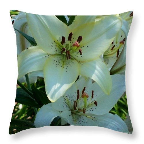 Lily Throw Pillow featuring the photograph Easter Lily by David Neace