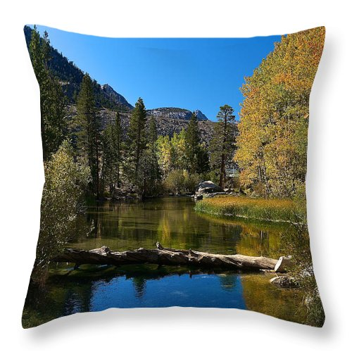 Eastern Sierras Throw Pillow featuring the photograph Eastern Sierras 13 by Richard J Cassato