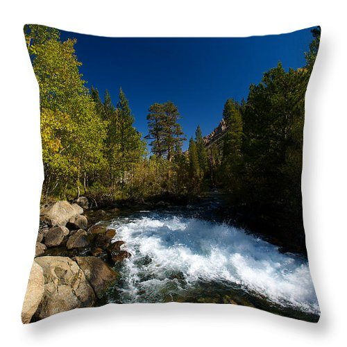 Eastern Sierras Throw Pillow featuring the photograph Eastern Sierras 14 by Richard J Cassato