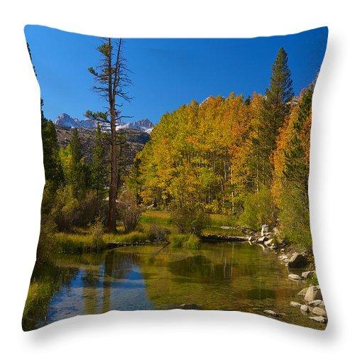 Eastern Sierras Throw Pillow featuring the photograph Eastern Sierras 16 by Richard J Cassato
