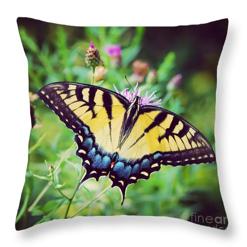 Butterfly Throw Pillow featuring the photograph Eastern Tiger Swallowtail by Kerri Farley