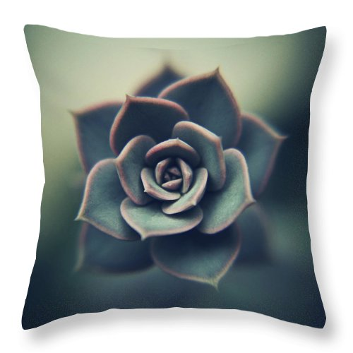 Outdoors Throw Pillow featuring the photograph Echeveria Macro by Con Ryan