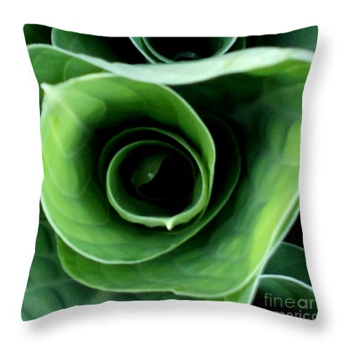 Hosta Throw Pillow featuring the photograph Echo I by Valerie Fuqua