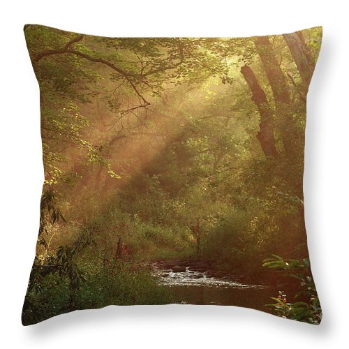 Sunlight Throw Pillow featuring the photograph Eden...maybe. by Douglas Stucky