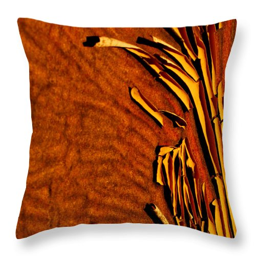 Ron Tackett Throw Pillow featuring the photograph Edged by Ron Tackett