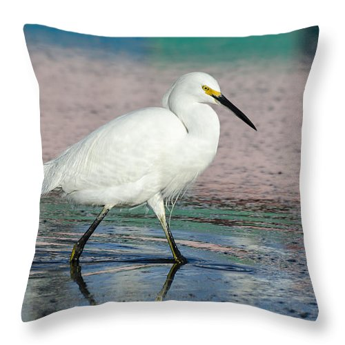 Egret Throw Pillow featuring the photograph Egret Reflections- 2 by Bruce Frye