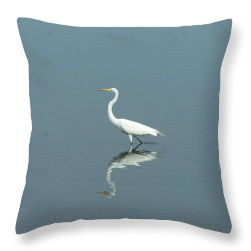 Shore Birds Throw Pillow featuring the photograph Egret Shadow by Joan Gal-Peck