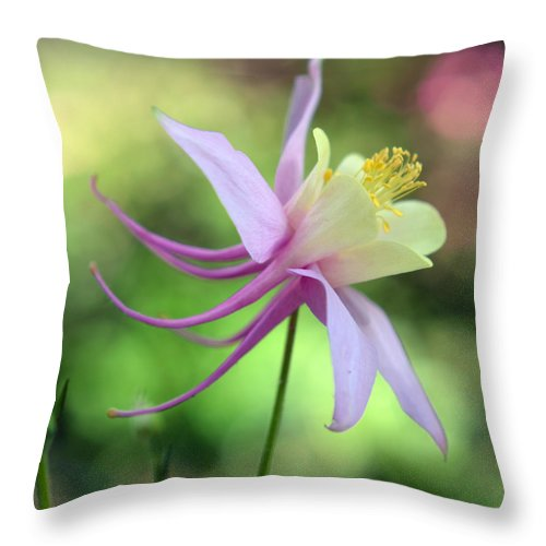 Nature Throw Pillow featuring the photograph Elegant Dancer by Sebastiano Secondi
