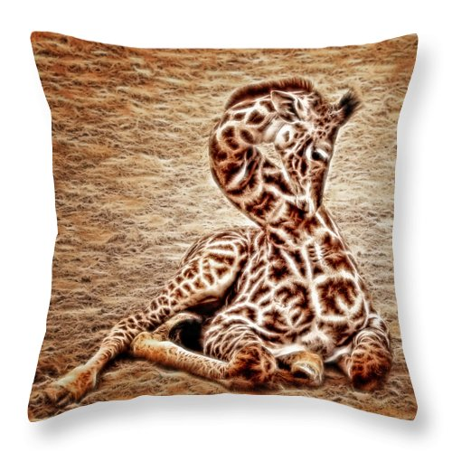 Zoo Throw Pillow featuring the photograph Elegant Infant by Lucy VanSwearingen