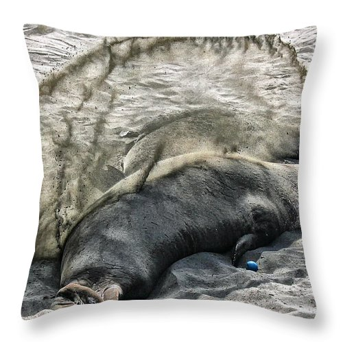Elephant Throw Pillow featuring the photograph Elephant Seal by Stefan H Unger