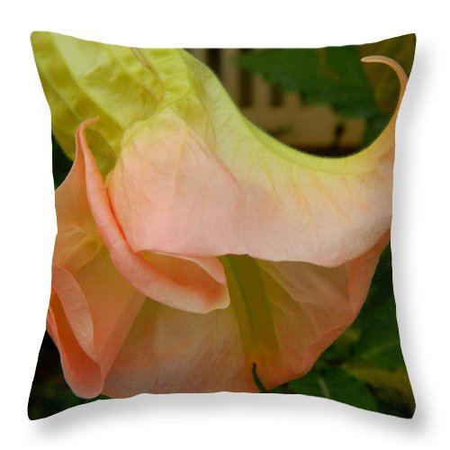 Flowers Throw Pillow featuring the photograph Elf Shoe by Kathy Barney