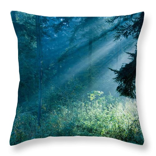 Nature Throw Pillow featuring the photograph Elven Forest by Daniel Csoka