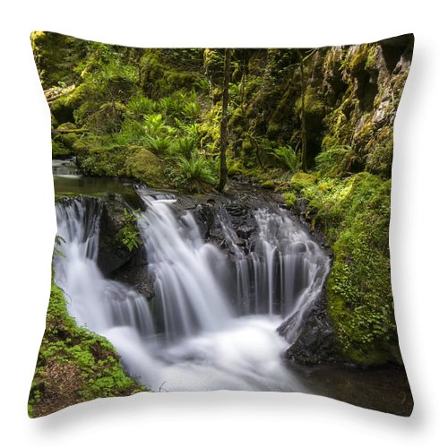 Creek Throw Pillow featuring the photograph Emerald Falls by Erika Fawcett
