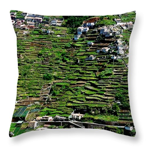 Photo Stream Throw Pillow featuring the photograph Emerald Madeira Terraces by Eric Tressler