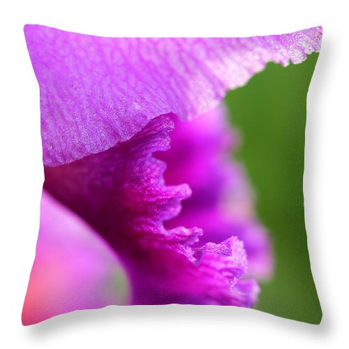 Emotion Throw Pillow featuring the photograph Emotion by Rachel Cohen