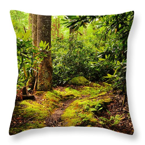 Glade Creek Grist Mill Throw Pillow featuring the photograph Enchanted by Lj Lambert
