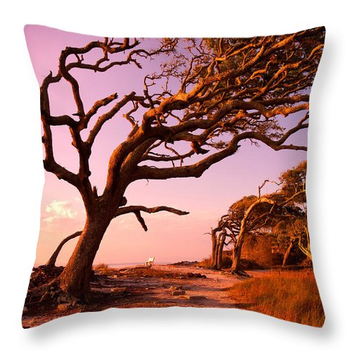 Jekyll Island Throw Pillow featuring the photograph Enchanted Park Bench by Renee Sullivan