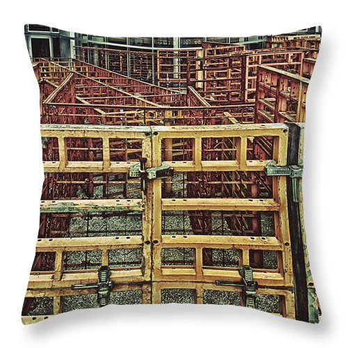 Photography Throw Pillow featuring the photograph Enclosure by Peter Benkmann