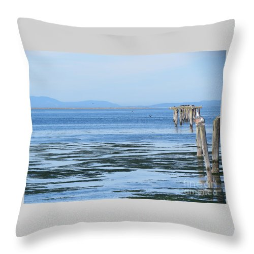 Washington Throw Pillow featuring the photograph End Of The World In Blue by LeLa Becker