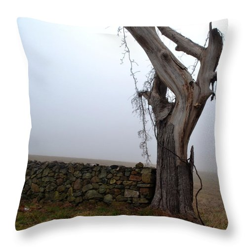 Tree Throw Pillow featuring the photograph End Point by Carlee Ojeda