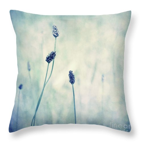 Blue Throw Pillow featuring the photograph Endearing by Priska Wettstein