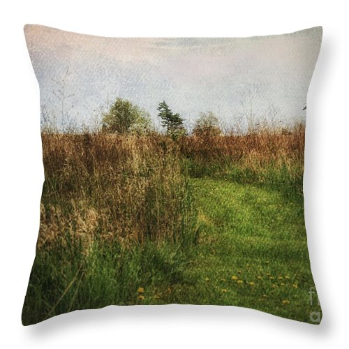 Rural Landscape Throw Pillow featuring the photograph Enjoy The Journey by Pamela Baker