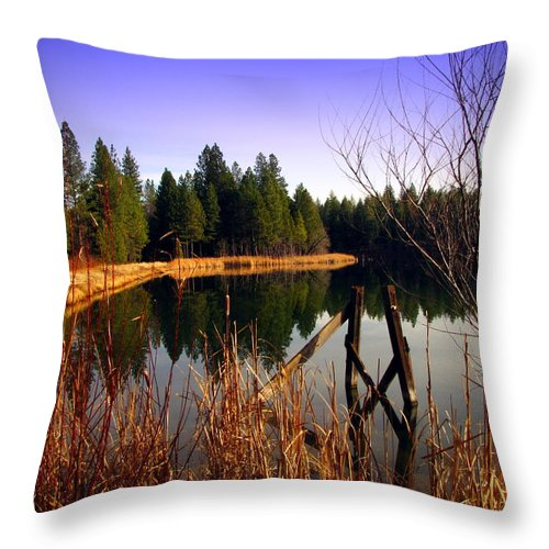 Lake Throw Pillow featuring the photograph Enjoying The View At Grace Lake by Joyce Dickens