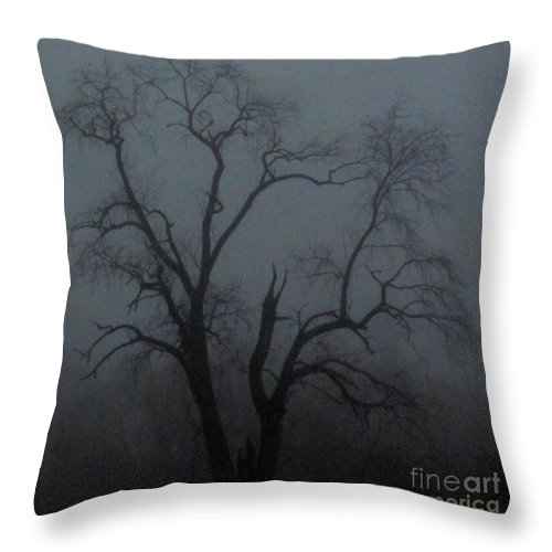 Erie Arbor Erie Trees Dark Trees Ominous Trees Creepy Trees Foggy Tree Silhouette Fog Tree Images Fog Tree Prints Winter Catalapa Tree In Fog Haunting Tree Images Haunting Prints Erie Prints Foggy Flora Misty Tree Natural Landscapes Treescapes Fogscapes Winter Trees Winter Flora Winter Arbor Fine Art Nature Photography Pixels.com Throw Pillow featuring the photograph Erie Arbor Elder by Joshua Bales