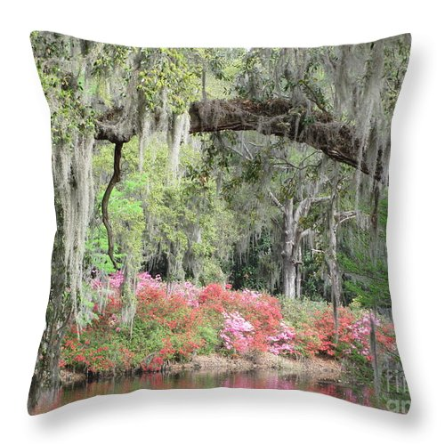 Estherville Throw Pillow featuring the photograph Estherville Plantation by Anita Adams