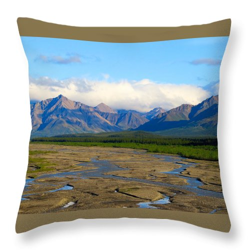 Alaska Throw Pillow featuring the photograph Eternal Pathway by Michael Anthony