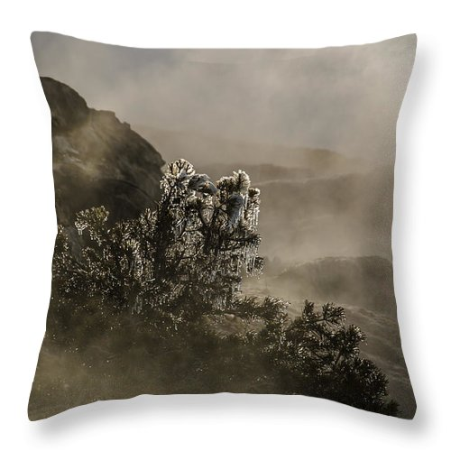 Mammoth Hot Springs Throw Pillow featuring the photograph Ethereal Beauty by Sue Smith
