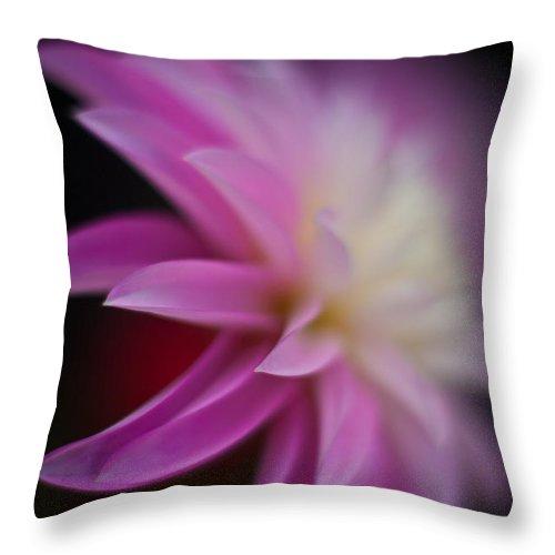 Dahlias Throw Pillow featuring the photograph Ethereal Dahlia by Mike Reid