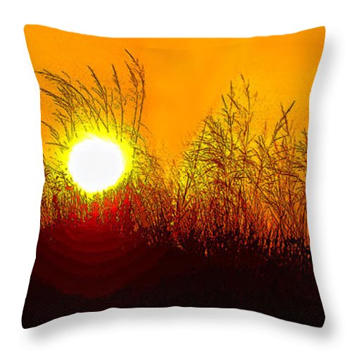 Sauble Beach Throw Pillow featuring the photograph Evening Dunes by Steve Harrington