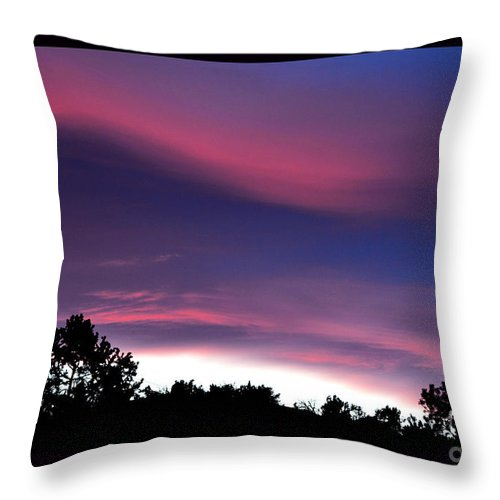 Zen Art Throw Pillow featuring the photograph Evening Haiku by Susanne Still