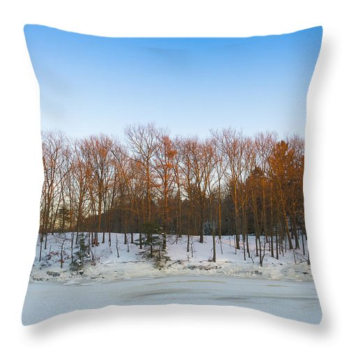 Snowstorm Throw Pillow featuring the photograph Evening Light On The Trees by David Stone