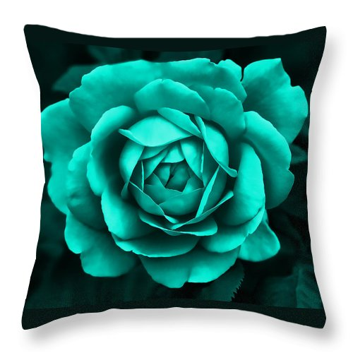 Rose Throw Pillow featuring the photograph Evening Teal Rose Flower by Jennie Marie Schell