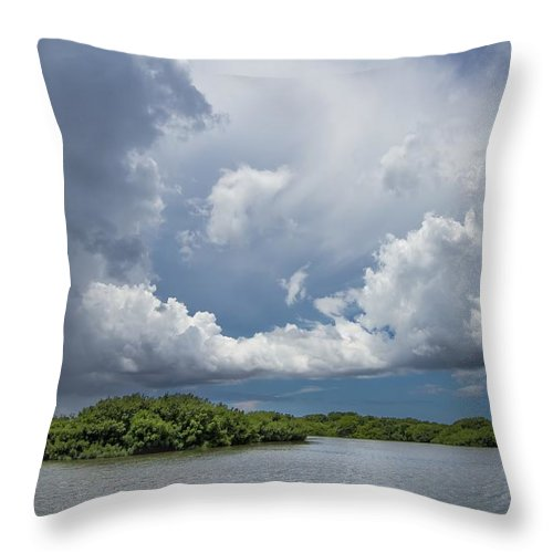 Everglades Throw Pillow featuring the photograph Everglades 0257 by Rudy Umans