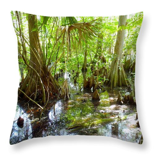 Everglades Throw Pillow featuring the photograph Everglades by Carey Chen