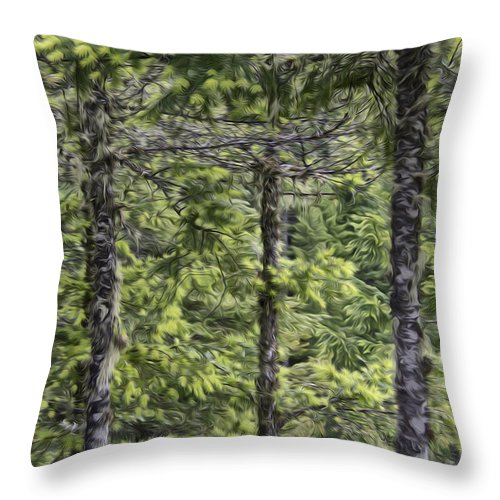 Trees Throw Pillow featuring the photograph Evergreens by Erika Fawcett