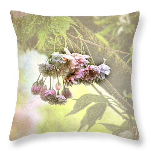 Blossoms Throw Pillow featuring the photograph Everyday Blessings by Bonnie Bruno