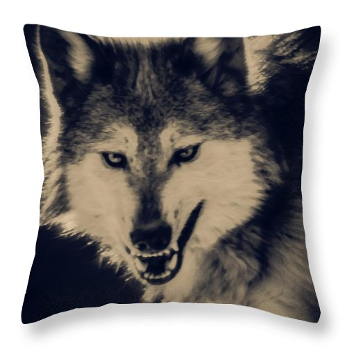 Wolf Throw Pillow featuring the digital art Evil Wolf by Ernie Echols