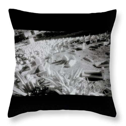 Landscape Throw Pillow featuring the photograph Sublime Fez by Shaun Higson