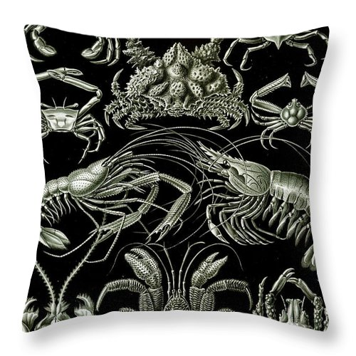Crustacean Throw Pillow featuring the painting Examples Of Decapoda Kunstformen Der Natur by Ernst Haeckel
