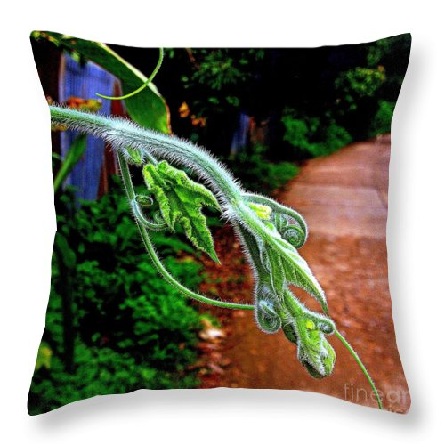 Nature Throw Pillow featuring the photograph Expression by Noa Yerushalmi