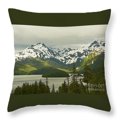 Alaska Throw Pillow featuring the photograph Eyak Lake Landscape by Nick Boren