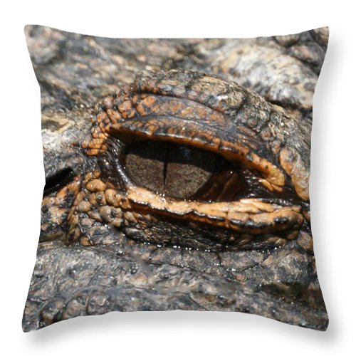 Alligator Throw Pillow featuring the photograph Eye Of The Gator by Ernie Echols