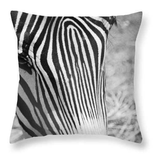 Zebra Throw Pillow featuring the photograph Facial Fingerprint by Breanna Calkins