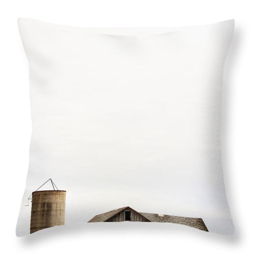 Old; Farm; Barn; Rural; Outside; Outdoors; Aged; Silo; Building; Architecture; Wood; Wooden; Grass; Worn; Field; Weeds; Out Of Focus; Blur; Blurry; Blurred; Queen Anne's Lace; Dried; Dry; Fall; Autumn; Brown; Carrot Weed Throw Pillow featuring the photograph Fading Past by Margie Hurwich