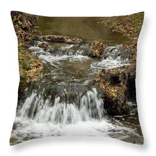 Waterfalls Throw Pillow featuring the photograph Fall At The Lower Falls by Lori Tordsen