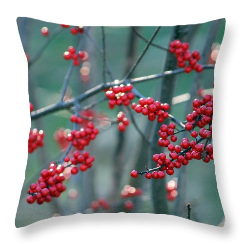 Red Throw Pillow featuring the photograph Fall Berries by Ulli Karner
